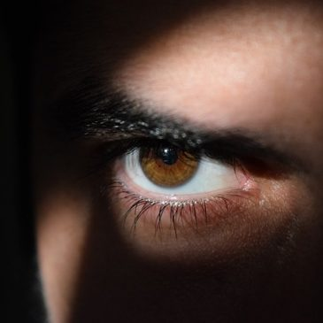 Link – Predators Hidden by Positive Stereotypes:Past and Present Danger